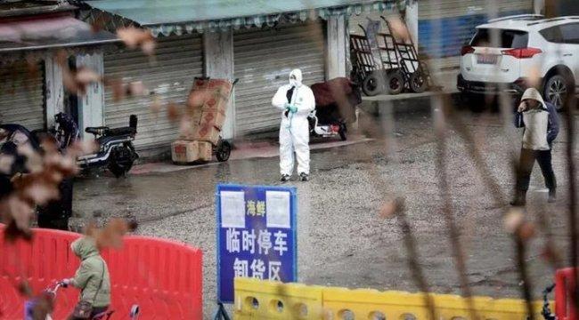 Dünya Sağlık Örgütü'nden Çin'deki hayvan pazarıyla ilgili açıklama